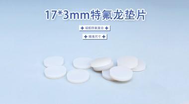 17*3mm特氟龙垫片